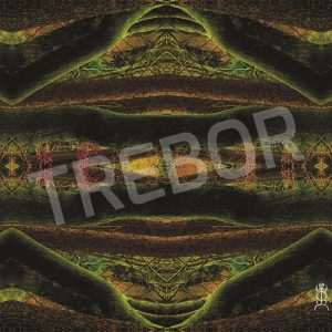 TREBOR - Besuch Synfeetree