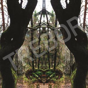 TREBOR - Tor der Liebe
