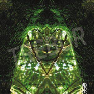 TREBOR - Die Grüne Frau vom Wackelstein