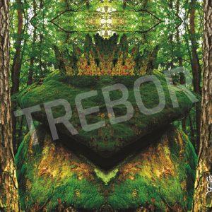 TREBOR - Waldfroschkönig