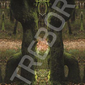 TREBOR - Spalt im Wald