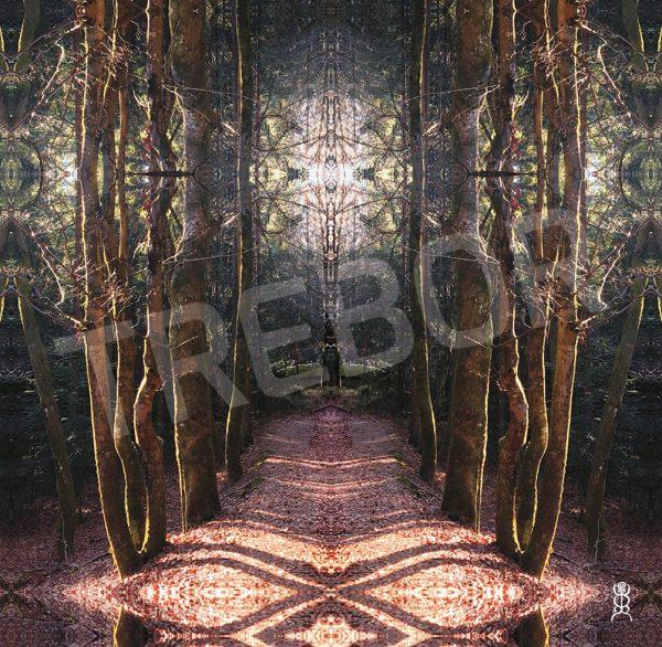 TREBOR - Weg zum Waldtempel