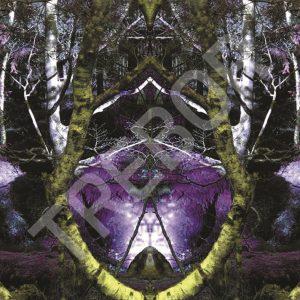 TREBOR - Lynx - Brain of Nature