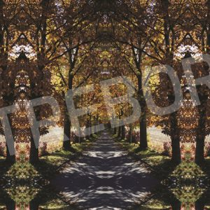 TREBOR - Streets of Gold