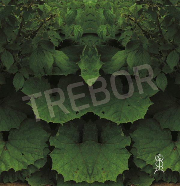 TREBOR - Der Grüne Drache